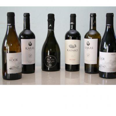 6 bottle winter x